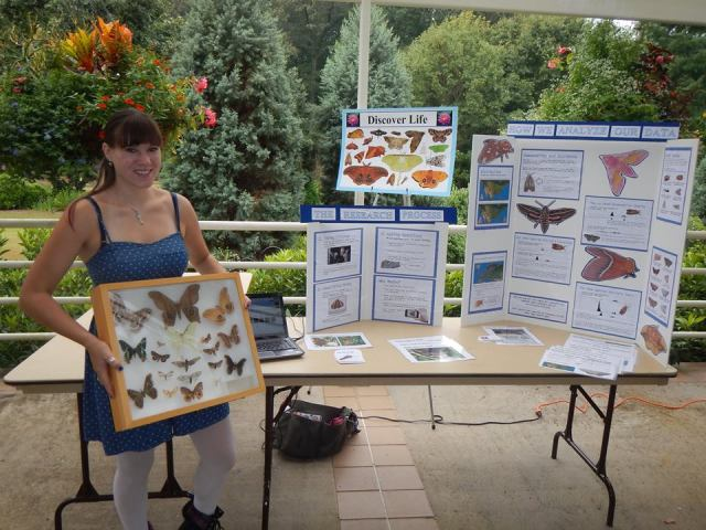 Nancy is displaying the kinds of moths that can be found in the United States to help get people excited about a moth photography citizen science project through discover life.