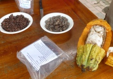 Chocolate in Ecuador. From the pod to the candy.