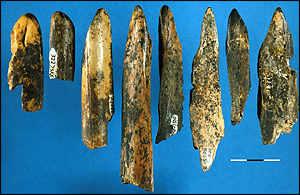 Early bone tools used. PC: Lucinda Backwel; Witwatersrand University