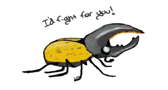 Hercules Beetle (Dynastes hercules) PC: Nancy Miorelli
