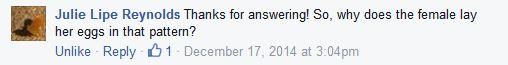 JLR question