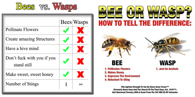 Typical examples of 'wasps are jerks memes'. The picture on the left was originally posted here in 2011, while the picture on the right is a product of Henry Kane farms, a humor site.