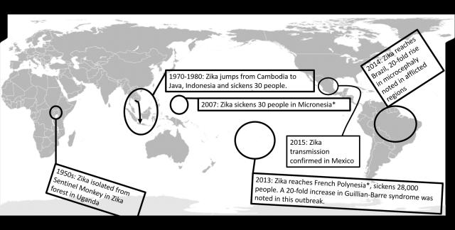Zika map 2