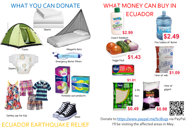 Here's a quick and dirty list of things that you could help donate or help us buy.