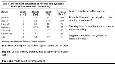 spider-silk-strength
