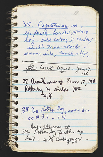 Margaret's Belize field notebook.